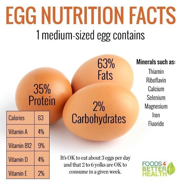 How Much Protein is in an Egg?