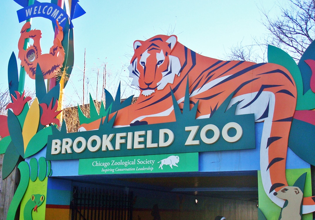 How much does it cost to get into Brookfield Zoo?